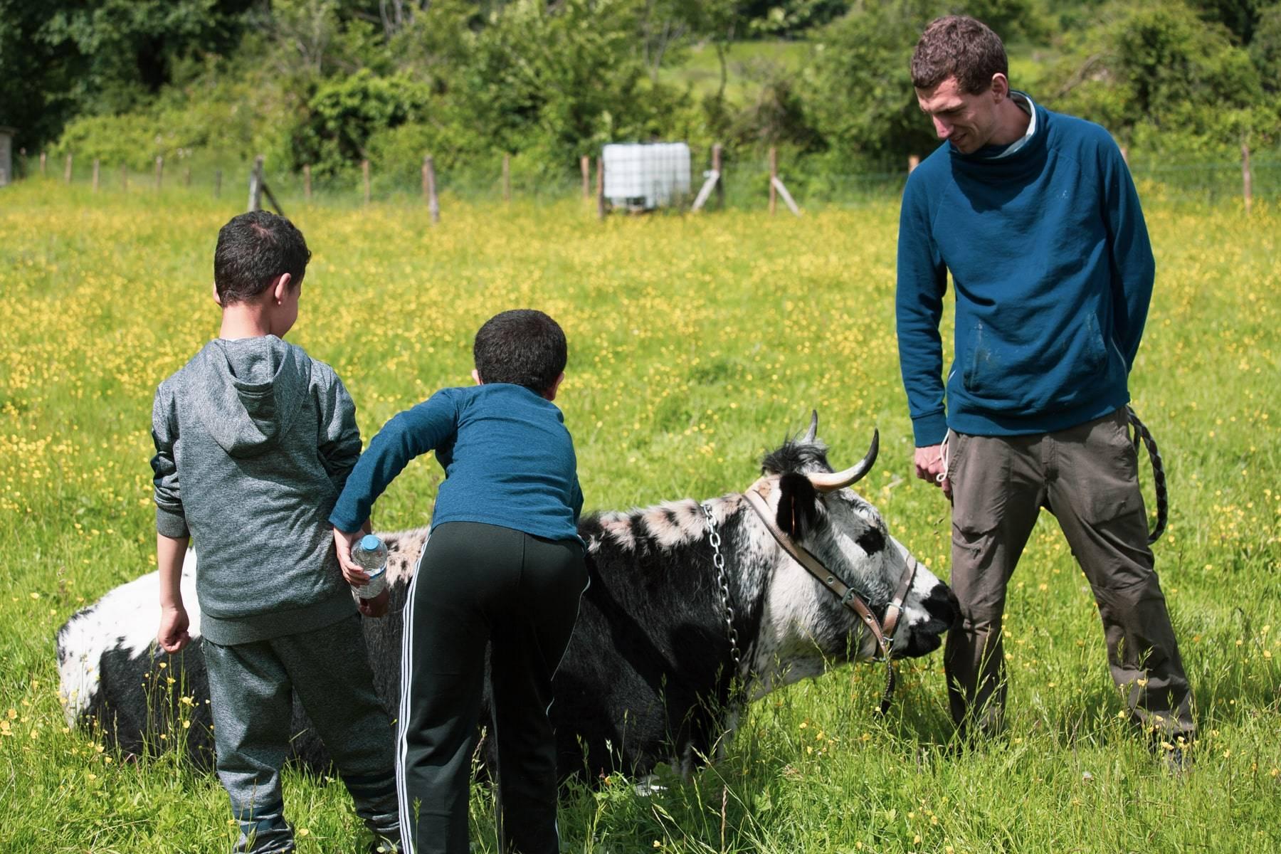 La ferme d'Ecancourt :  des QR Codes pour nourrir les animaux